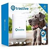 Tractive GPS Tracker XL für Hunde - Peilsender...